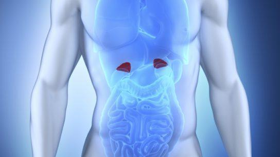 Mortality Increased Among Congenital Adrenal Hyperplasia Patients