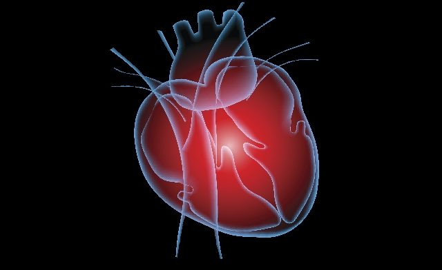 Cardiogenic shock was associated with elevated mortality in patients with STEMI