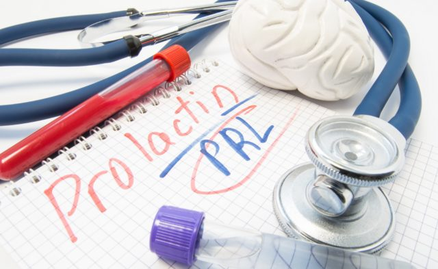 prolactin, brain figure, test tubes